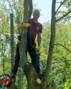 joe rockenstein - tree trimmer, remover
