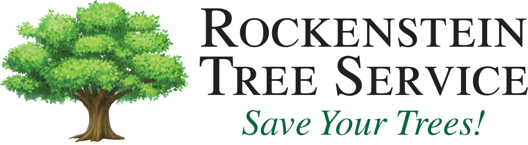 Rockenstein Tree Service